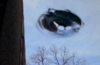 UFO Photo from Olivet College, Michigan on April 27, 2013