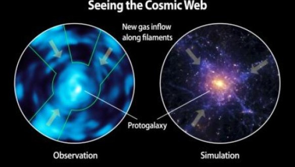 Comparison of Lyman alpha blob observed with Cosmic Web