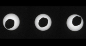 NASA Mars Rover Views Eclipse of the Sun by Phobos