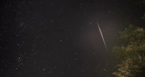 Meteor Activity Outlook for November 30-December 6, 2013