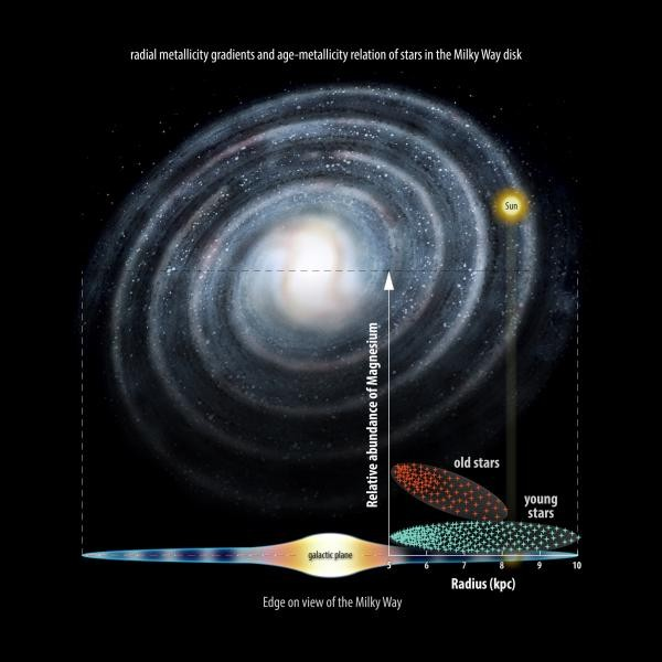 "The team has shown that older, 'metal-poor' stars inside the Solar Circle – the orbit of our Sun around the centre of the Milky Way, which takes roughly 250 million years to complete – are far more likely to have high levels of magnesium. The higher level of the element inside the Solar Circle suggests this area contained more stars that ""lived fast and die young"" in the past. (Credit: University of Cambridge)"