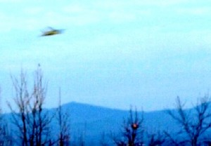 UFO Photo NC Hickory 14Dec12