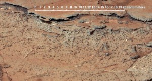Rover image from Gale Crater reveals soil